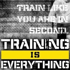 Training is Everything Banner